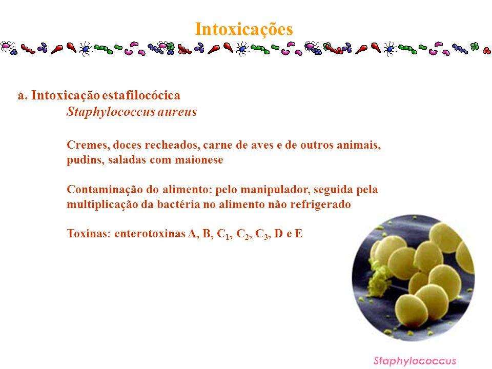 Intoxicações a. Intoxicação estafilocócica Staphylococcus aureus