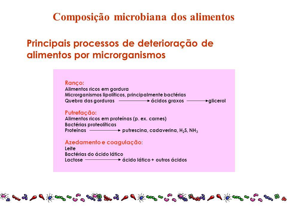 Composição microbiana dos alimentos
