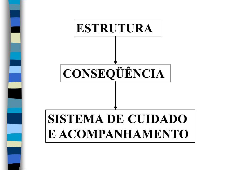 ESTRUTURA CONSEQÜÊNCIA SISTEMA DE CUIDADO E ACOMPANHAMENTO