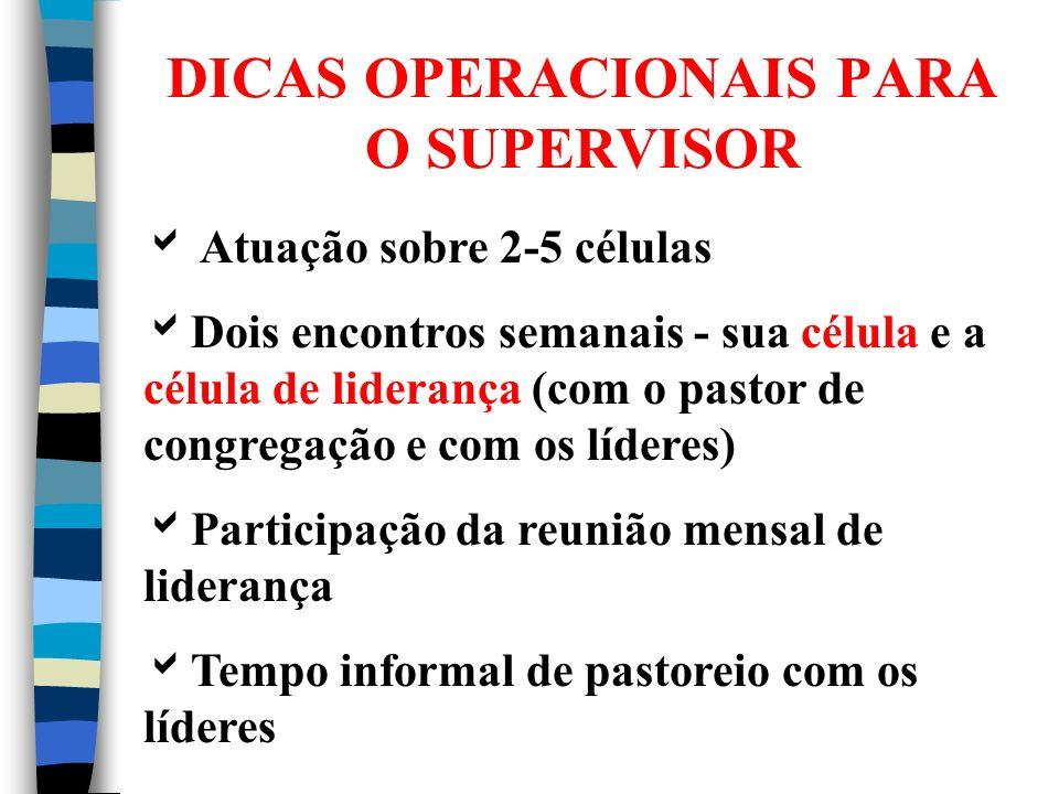 DICAS OPERACIONAIS PARA O SUPERVISOR