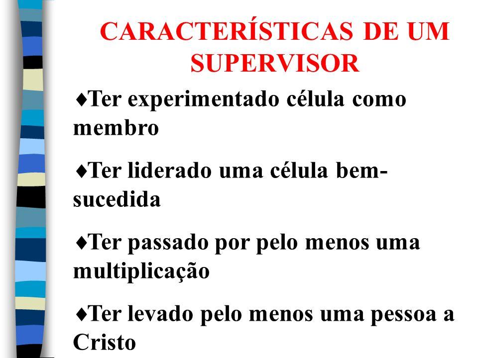 CARACTERÍSTICAS DE UM SUPERVISOR