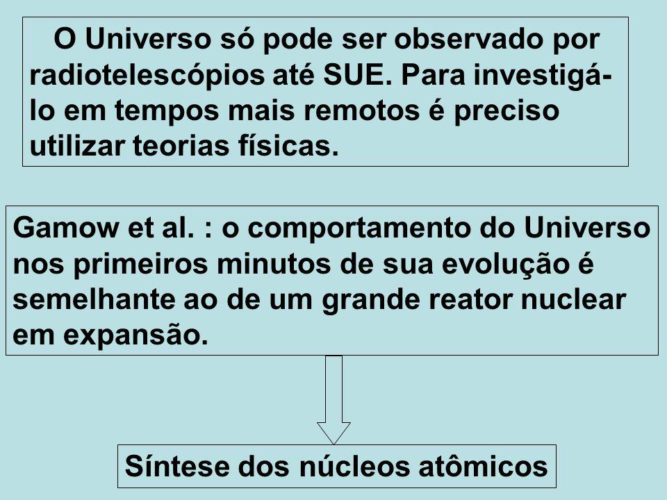 O Universo só pode ser observado por