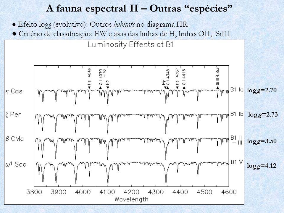 A fauna espectral II – Outras espécies