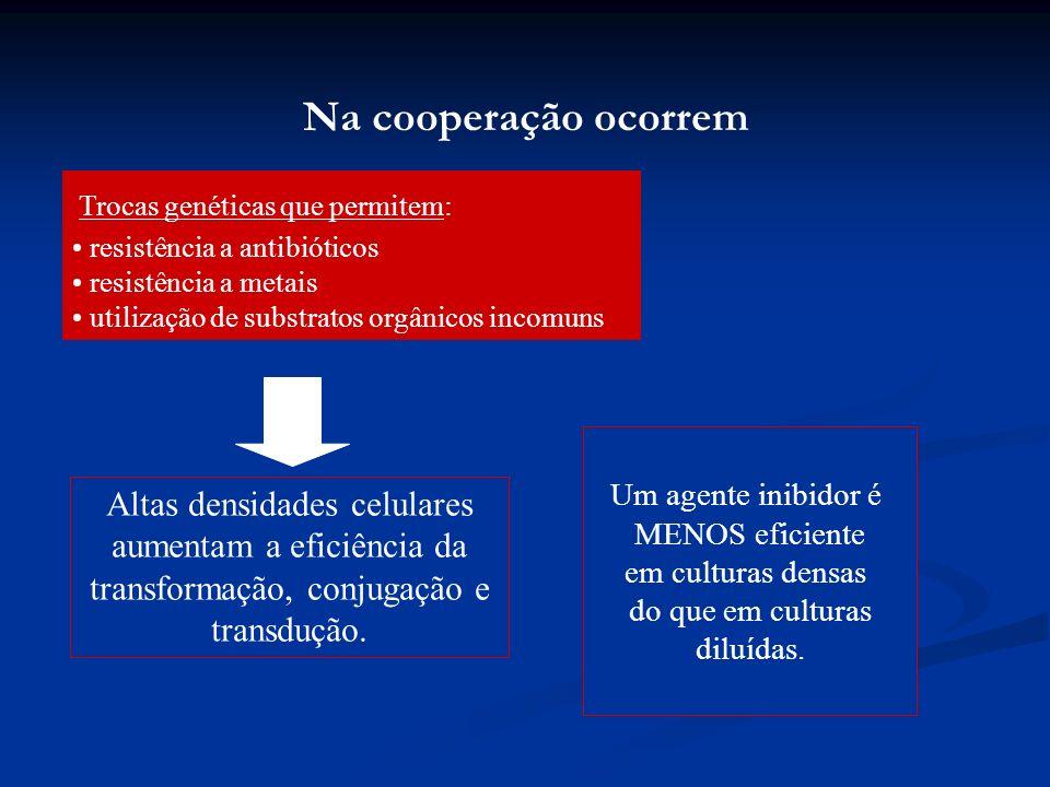 Na cooperação ocorrem Trocas genéticas que permitem: resistência a antibióticos. resistência a metais.