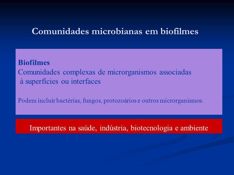 Comunidades microbianas em biofilmes