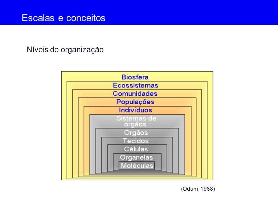 Escalas e conceitos Níveis de organização (Odum, 1988) (Odum, 1988)
