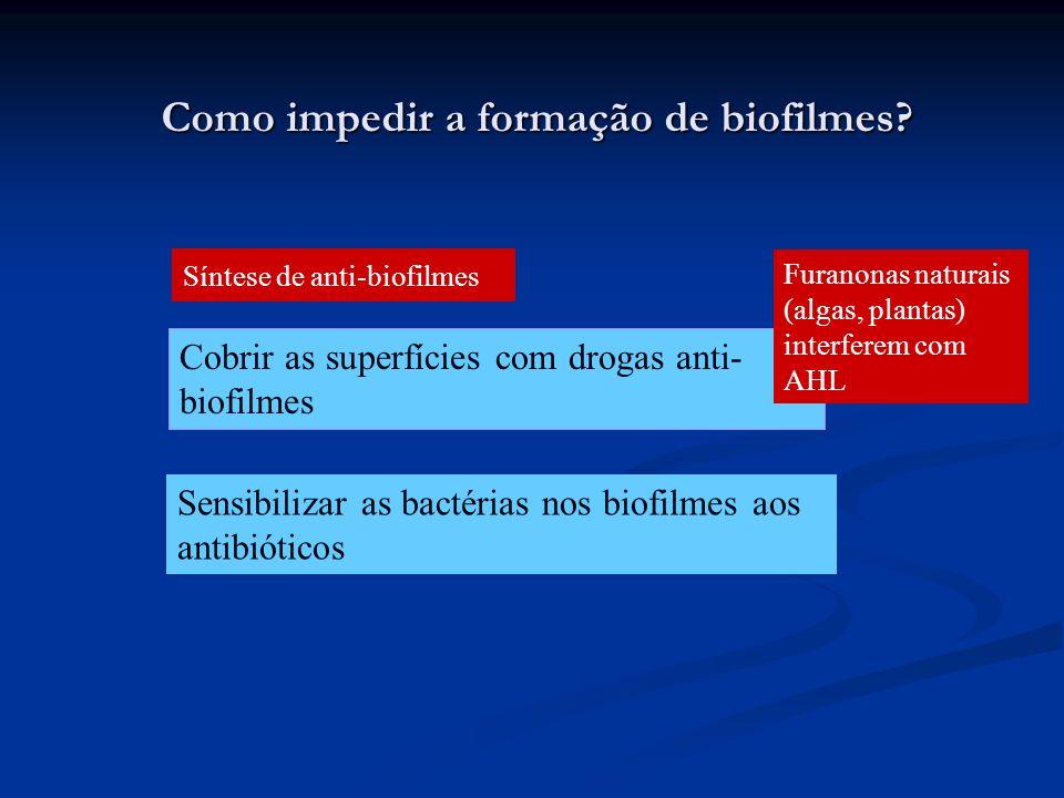 Como impedir a formação de biofilmes