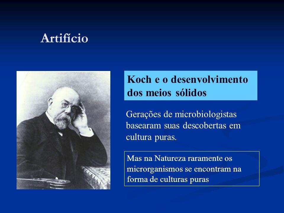 Artifício Koch e o desenvolvimento dos meios sólidos