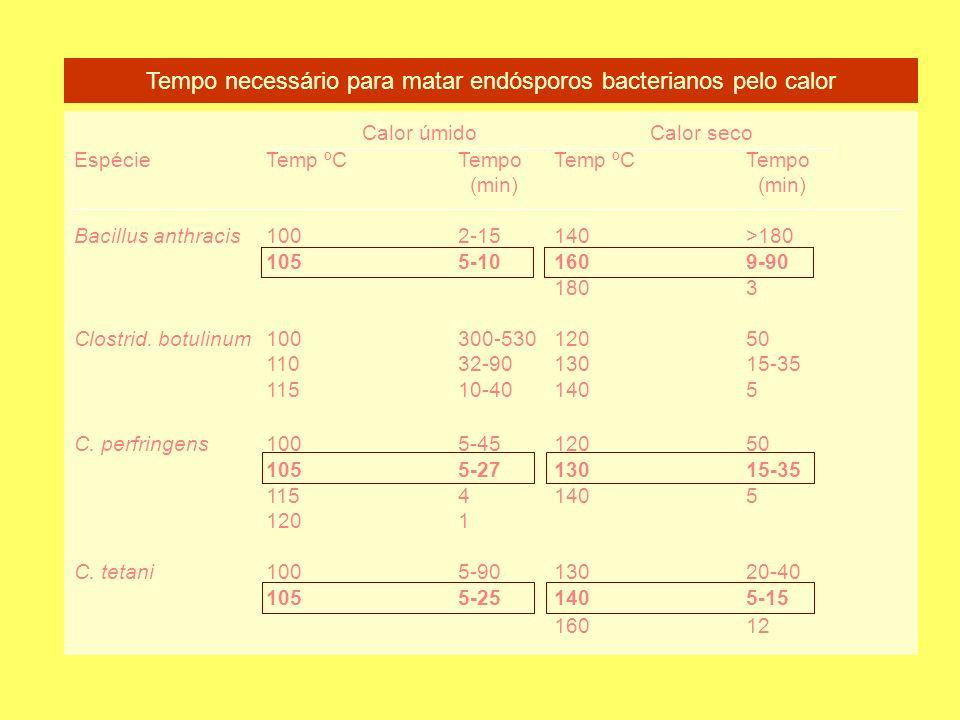 Tempo necessário para matar endósporos bacterianos pelo calor