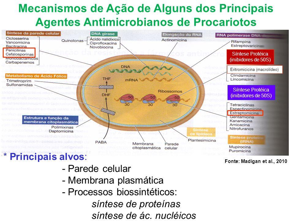 Mecanismos de Ação de Alguns dos Principais Agentes Antimicrobianos de Procariotos