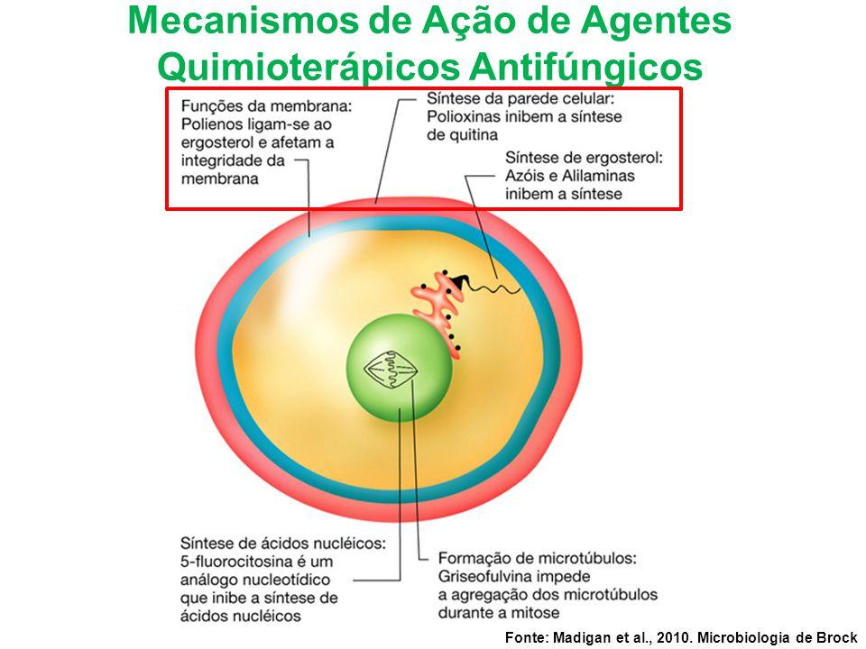 Mecanismos de Ação de Agentes Quimioterápicos Antifúngicos