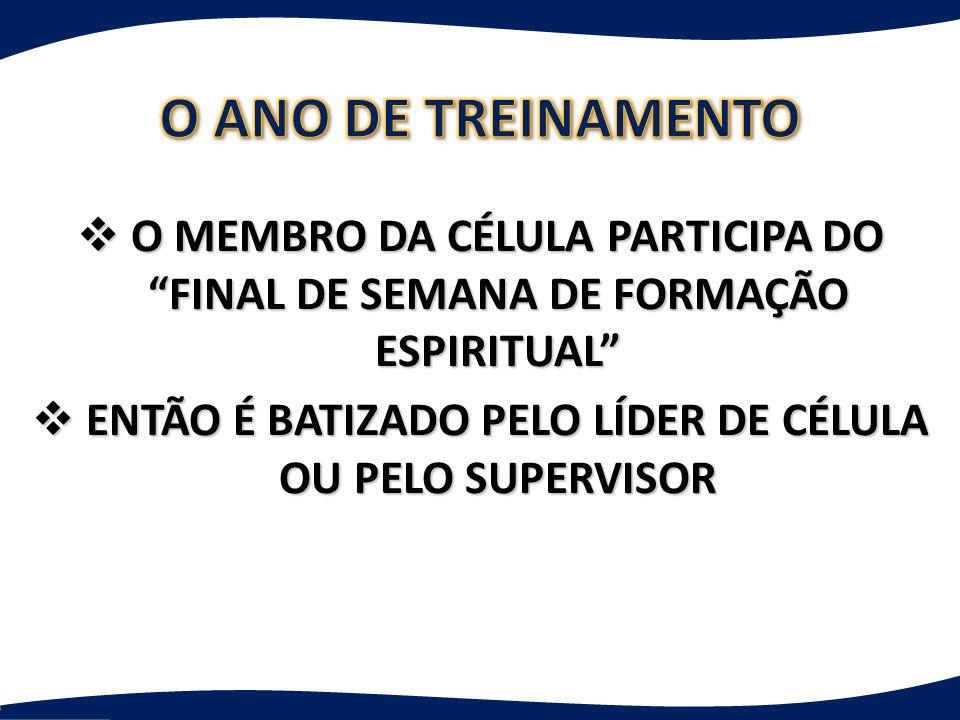 ENTÃO É BATIZADO PELO LÍDER DE CÉLULA OU PELO SUPERVISOR