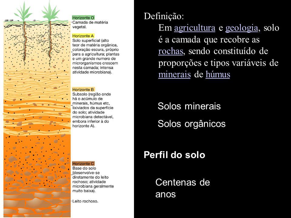 Definição: Em agricultura e geologia, solo é a camada que recobre as rochas, sendo constituído de proporções e tipos variáveis de minerais de húmus.