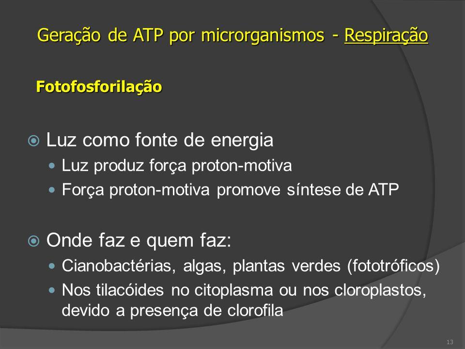 Geração de ATP por microrganismos - Respiração