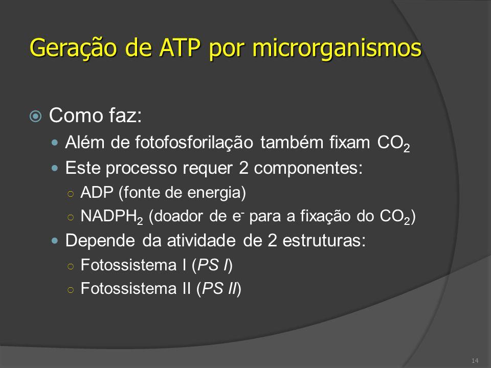 Geração de ATP por microrganismos