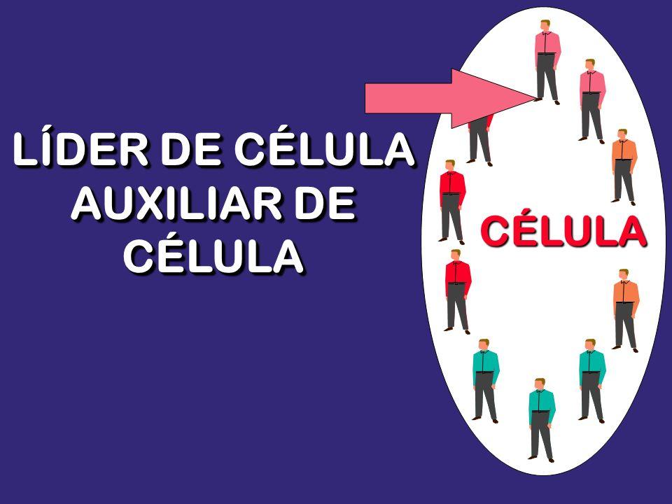 LÍDER DE CÉLULA AUXILIAR DE CÉLULA