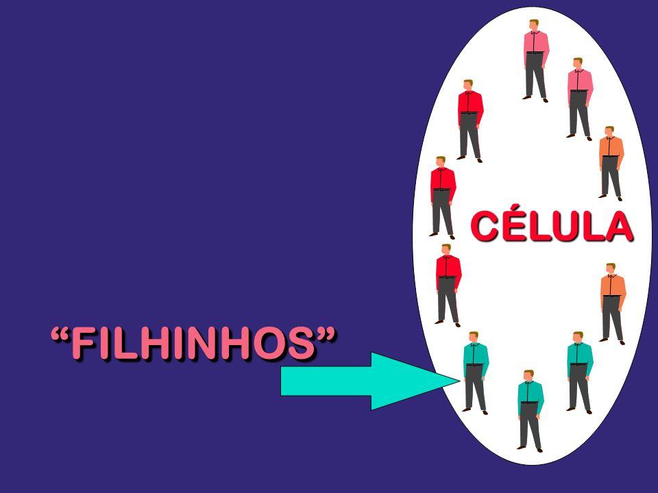 CÉLULA FILHINHOS