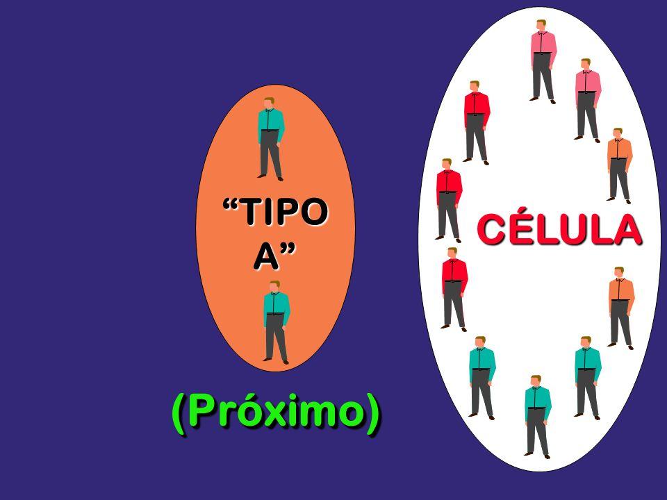 TIPO A CÉLULA (Próximo)