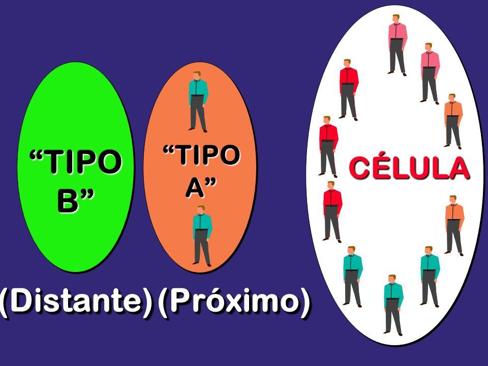 TIPO B (Distante) (Próximo)