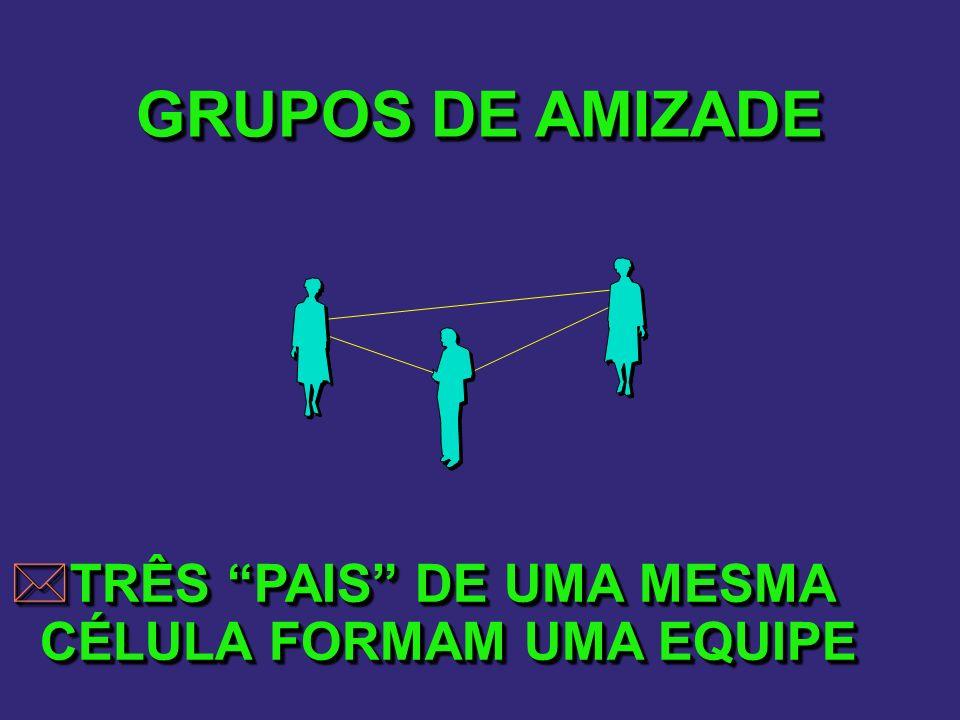 GRUPOS DE AMIZADE TRÊS PAIS DE UMA MESMA CÉLULA FORMAM UMA EQUIPE