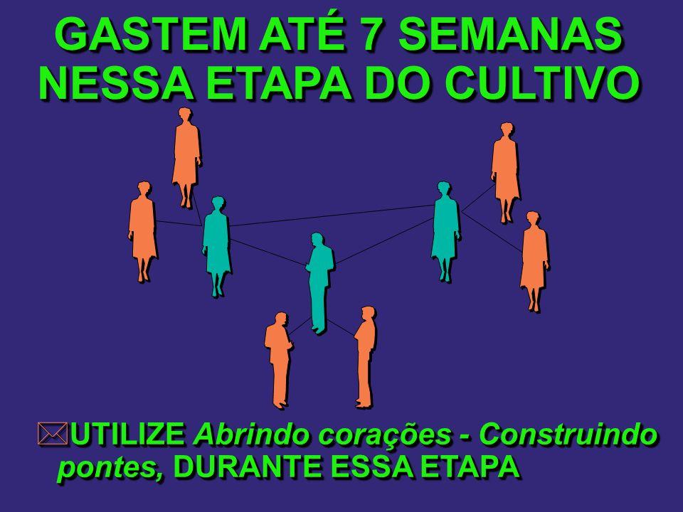 GASTEM ATÉ 7 SEMANAS NESSA ETAPA DO CULTIVO