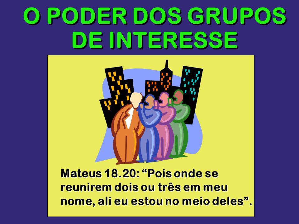 O PODER DOS GRUPOS DE INTERESSE