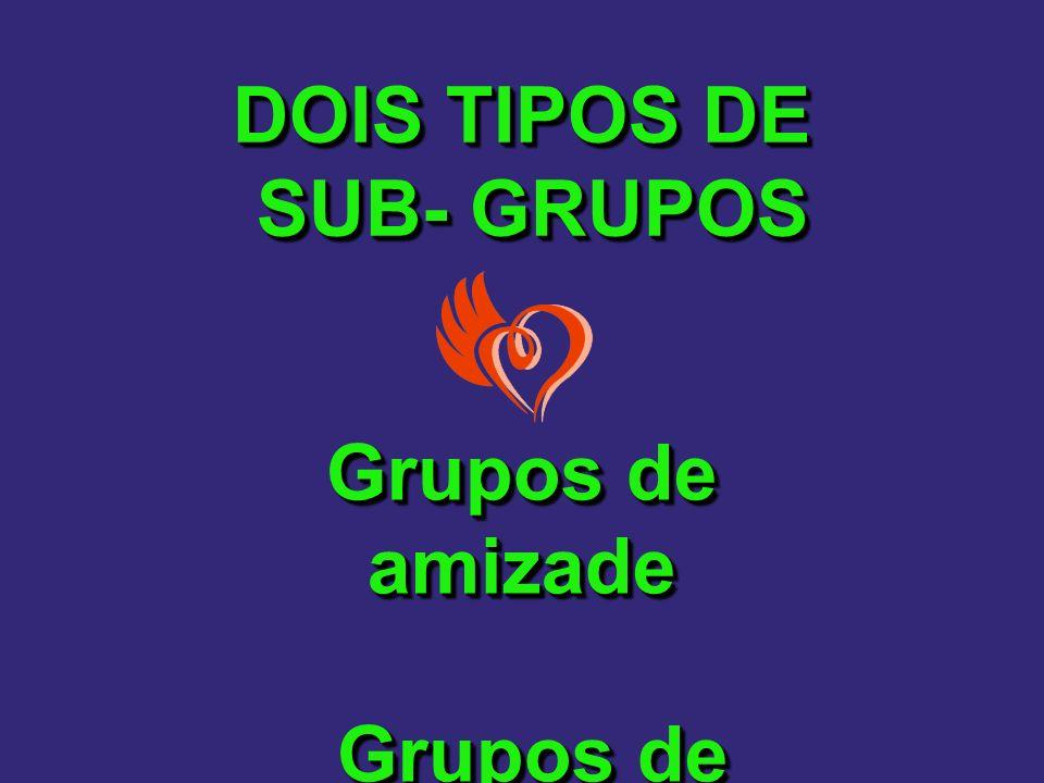 DOIS TIPOS DE SUB- GRUPOS Grupos de amizade Grupos de interesse