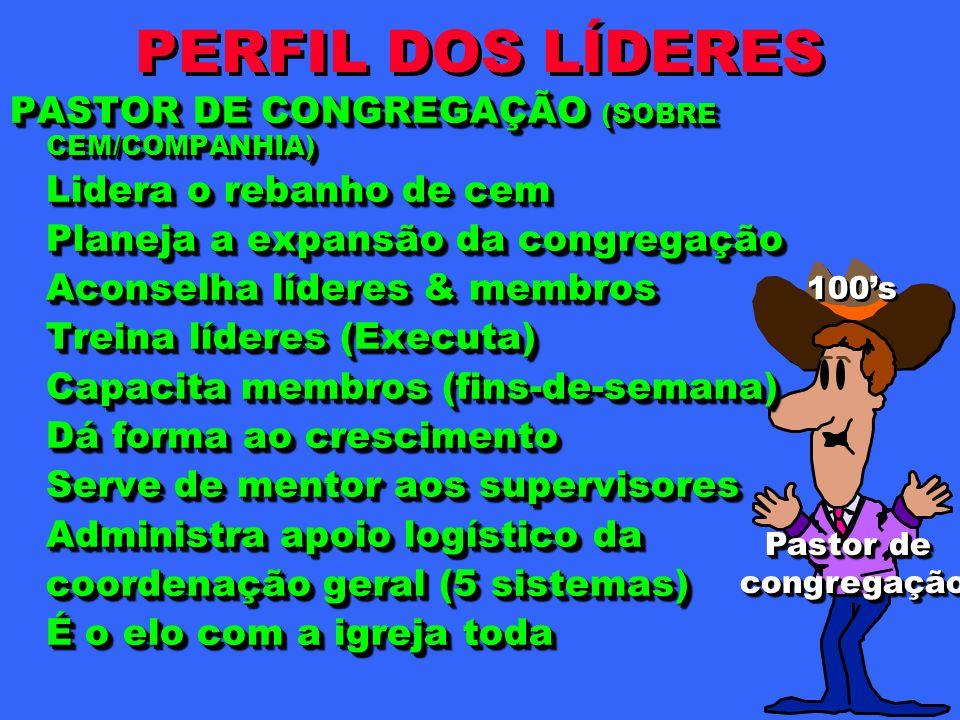 PERFIL DOS LÍDERES PASTOR DE CONGREGAÇÃO (SOBRE CEM/COMPANHIA)
