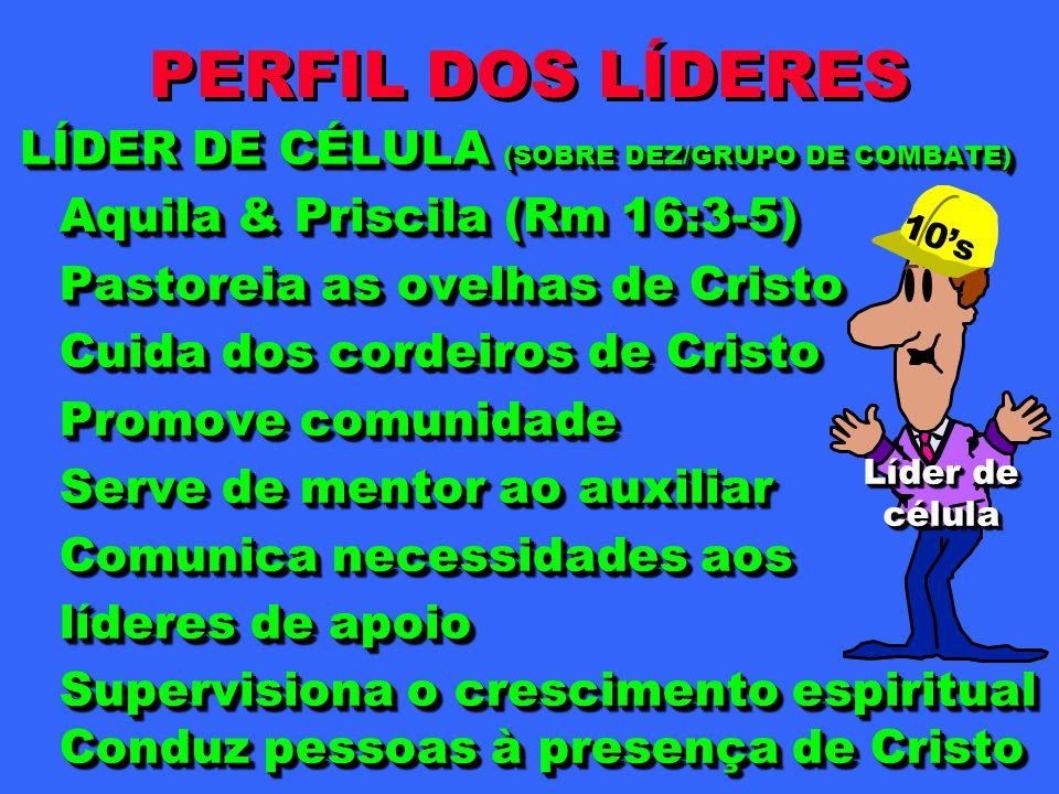 PERFIL DOS LÍDERES LÍDER DE CÉLULA (SOBRE DEZ/GRUPO DE COMBATE)