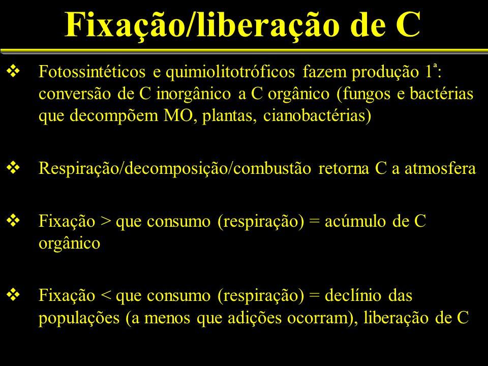 Fixação/liberação de C