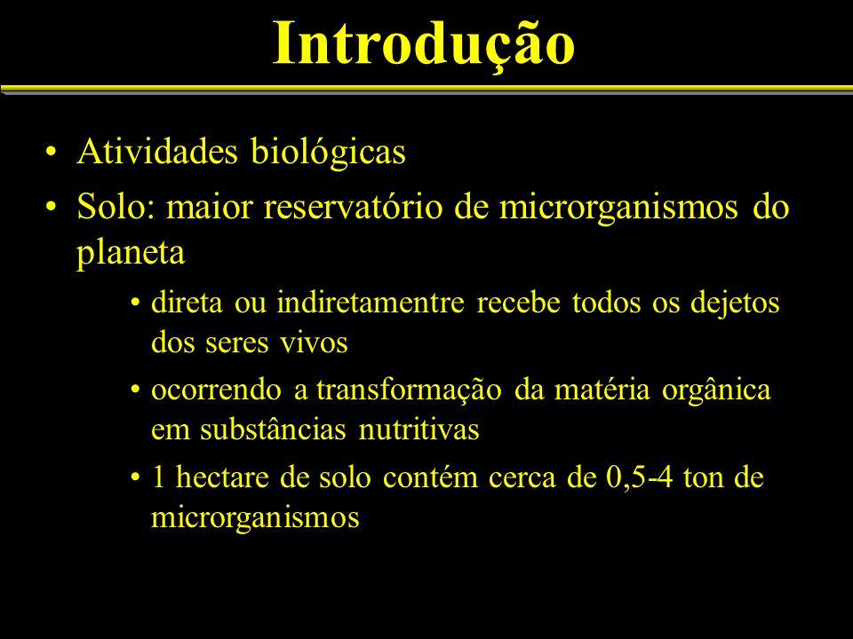 Introdução Atividades biológicas