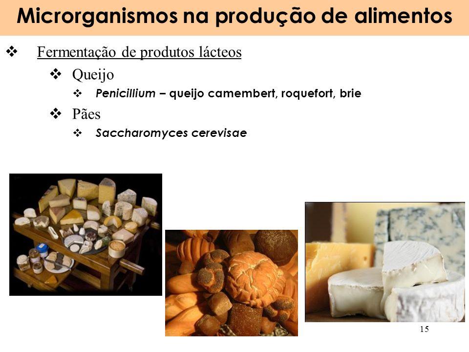 Microrganismos na produção de alimentos