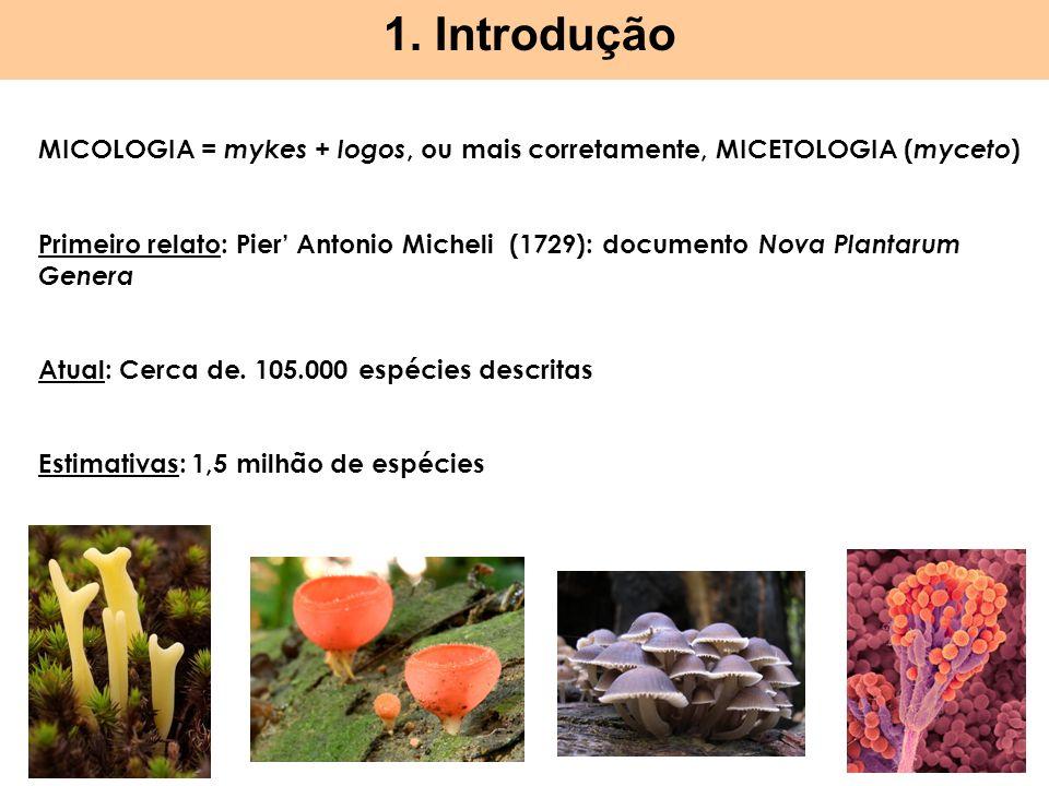 1. Introdução MICOLOGIA = mykes + logos, ou mais corretamente, MICETOLOGIA (myceto)