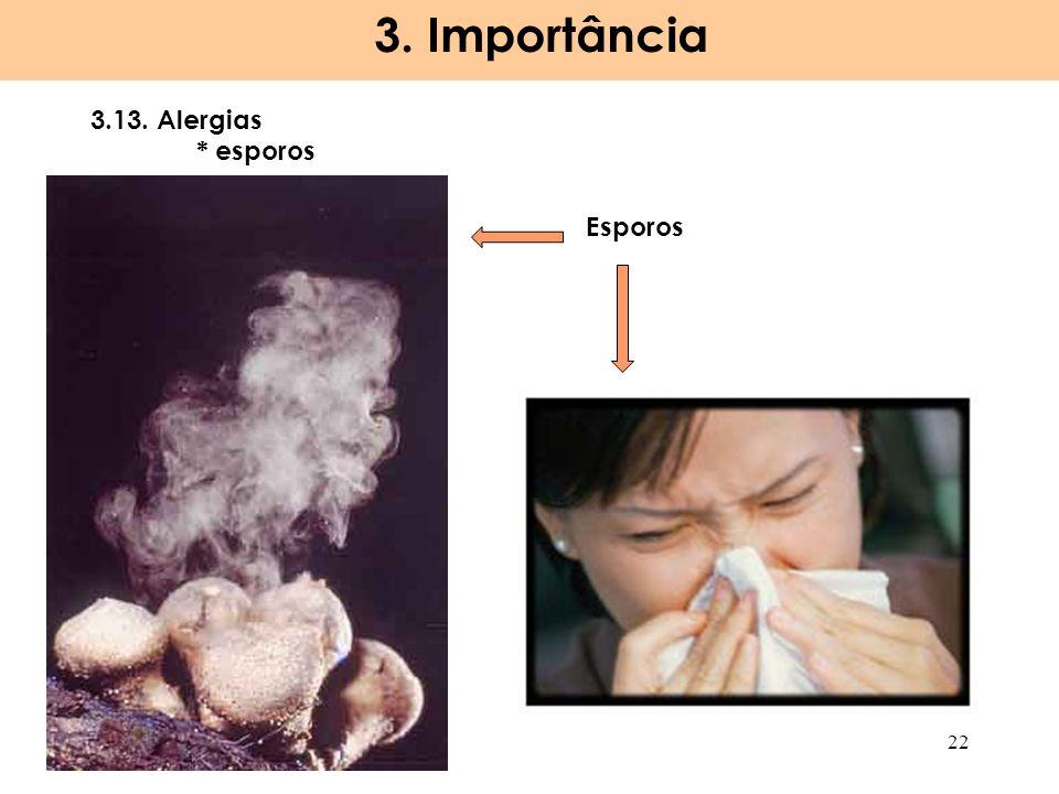 3. Importância 3.13. Alergias * esporos Esporos