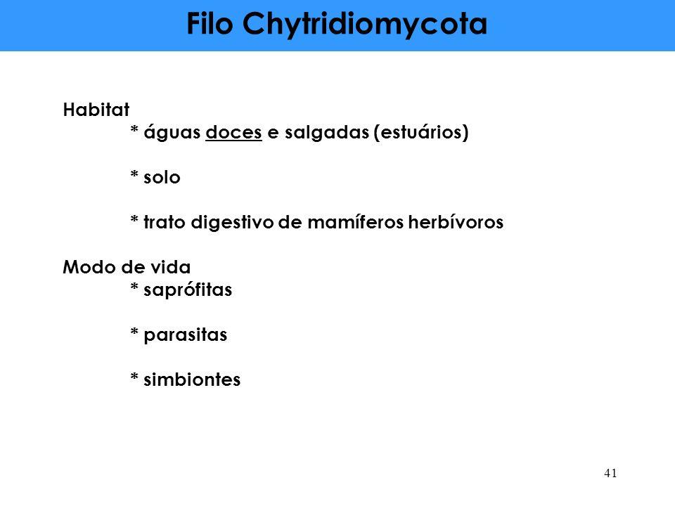 Filo Chytridiomycota Habitat * águas doces e salgadas (estuários)