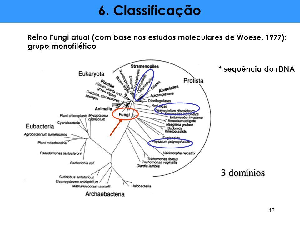 6. Classificação 3 domínios
