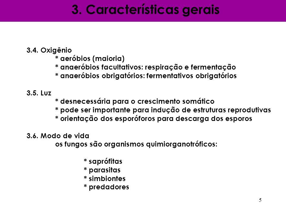3. Características gerais