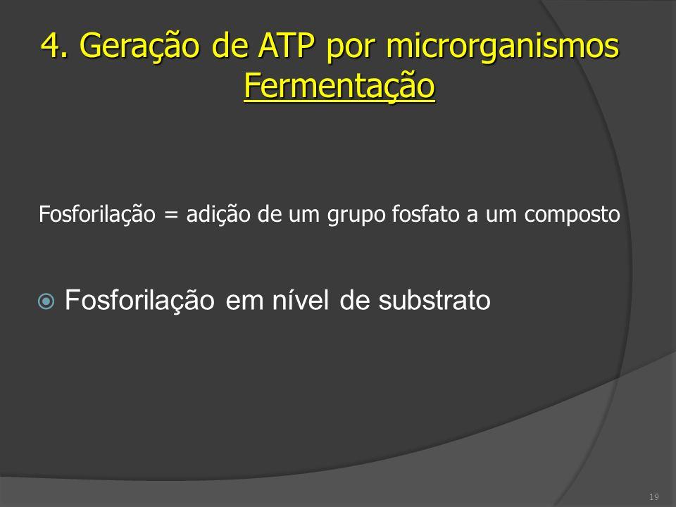 4. Geração de ATP por microrganismos Fermentação
