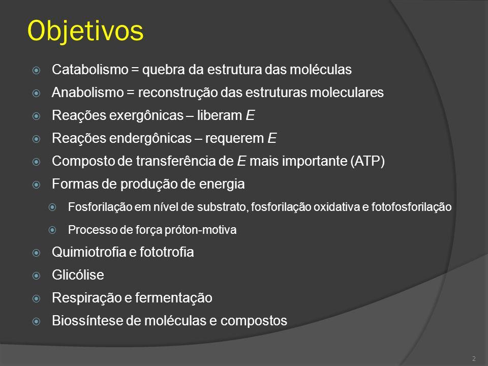 Objetivos Catabolismo = quebra da estrutura das moléculas