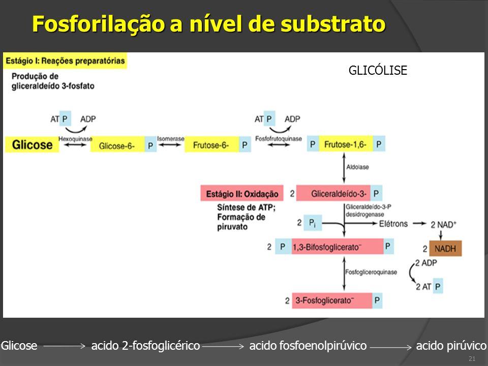Fosforilação a nível de substrato
