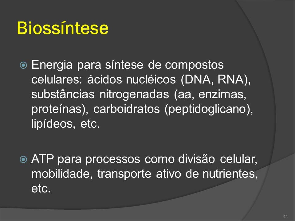 Biossíntese