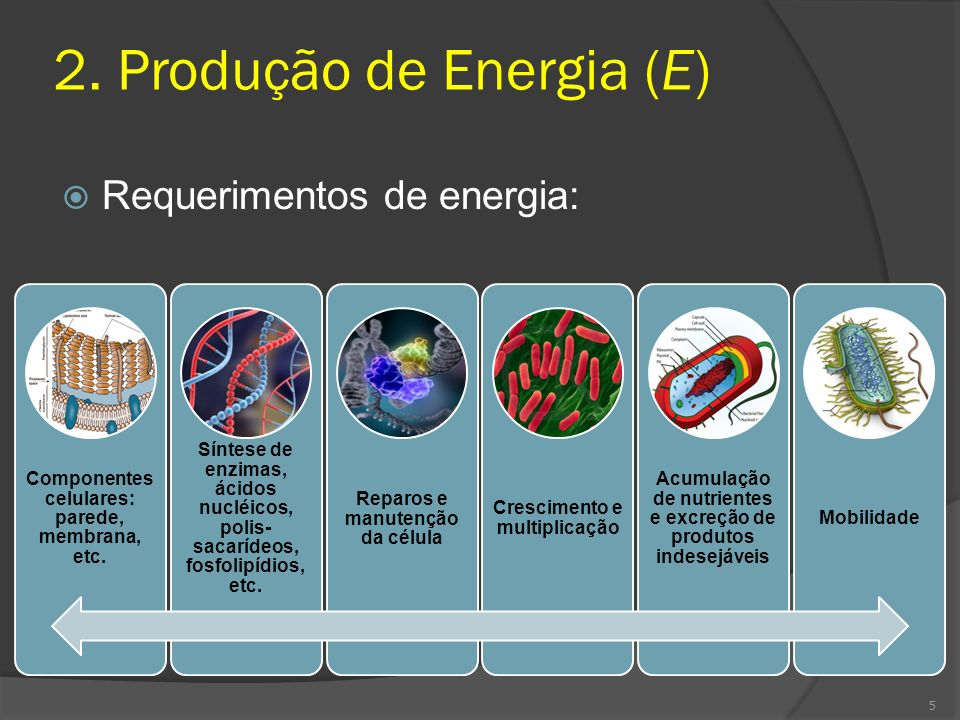 2. Produção de Energia (E)