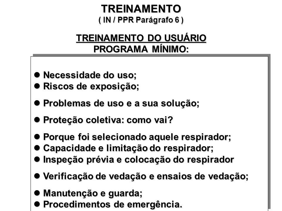 TREINAMENTO ( IN / PPR Parágrafo 6 ) TREINAMENTO DO USUÁRIO PROGRAMA MÍNIMO: