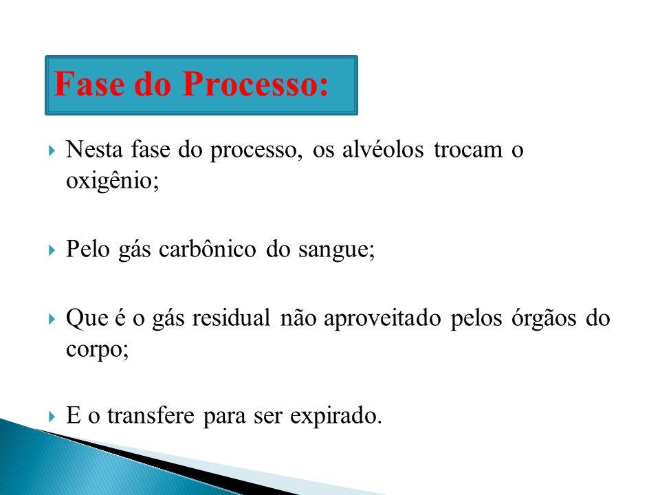 Fase do Processo: Nesta fase do processo, os alvéolos trocam o oxigênio; Pelo gás carbônico do sangue;