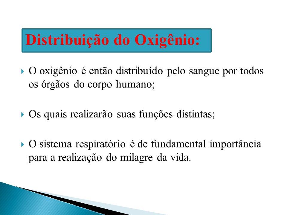 Distribuição do Oxigênio: