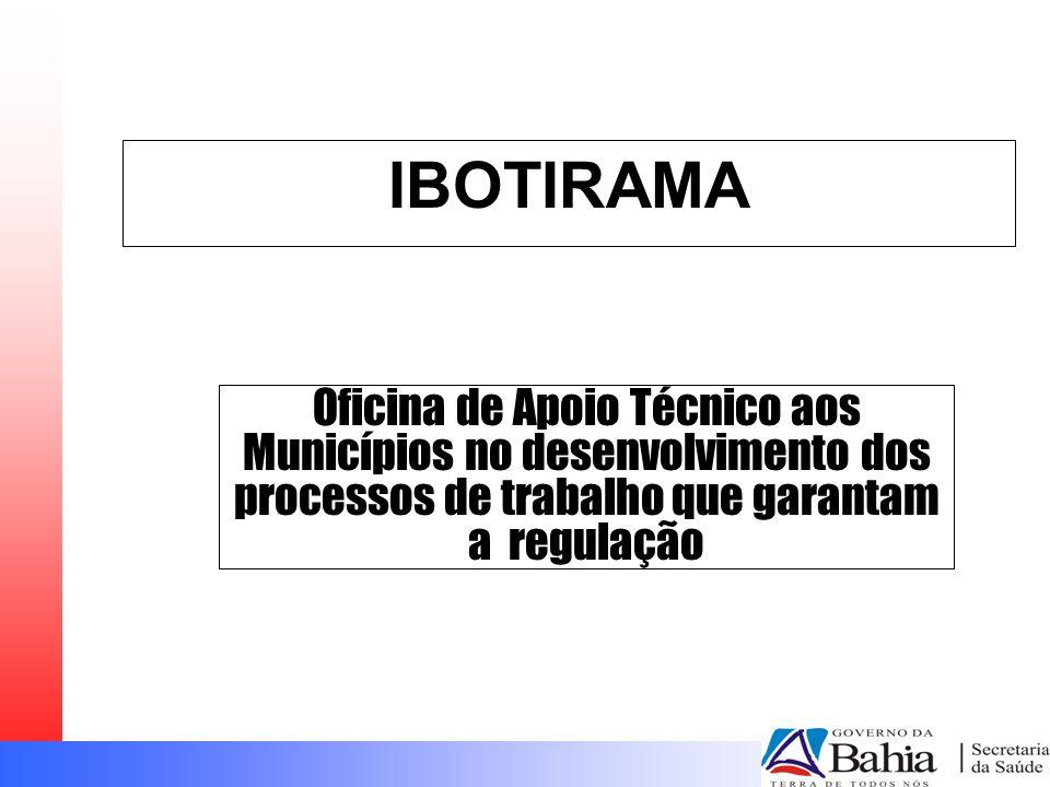 IBOTIRAMA Oficina de Apoio Técnico aos Municípios no desenvolvimento dos processos de trabalho que garantam a regulação.