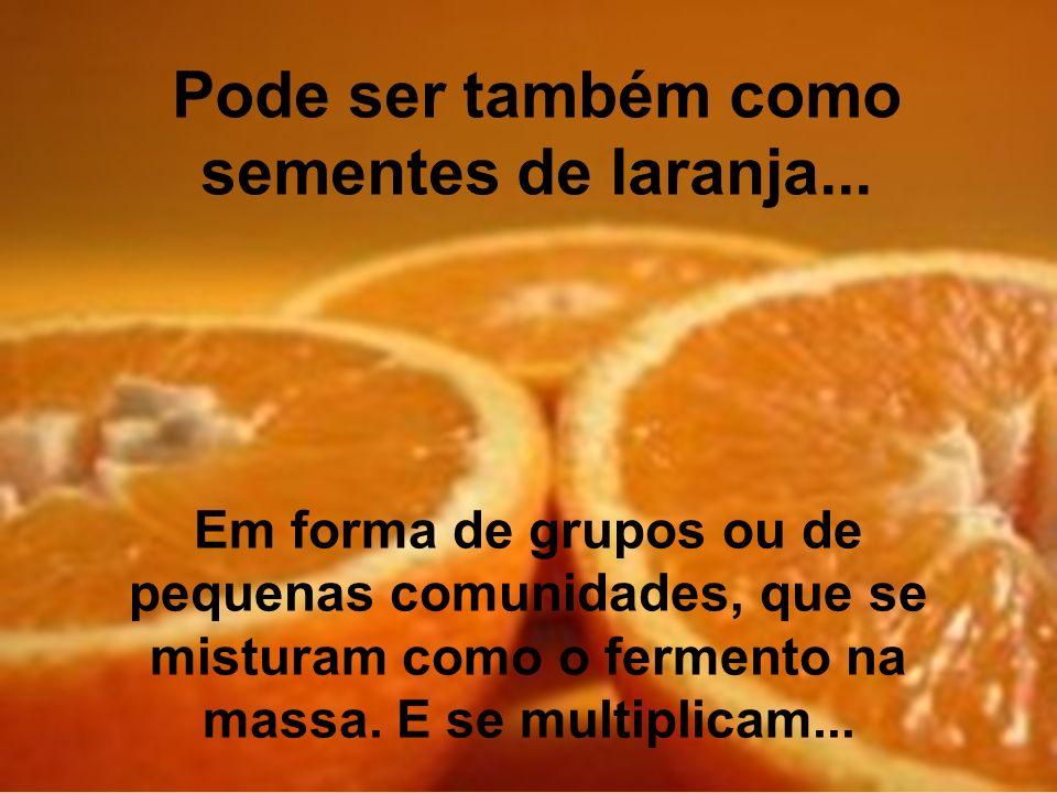 Pode ser também como sementes de laranja...