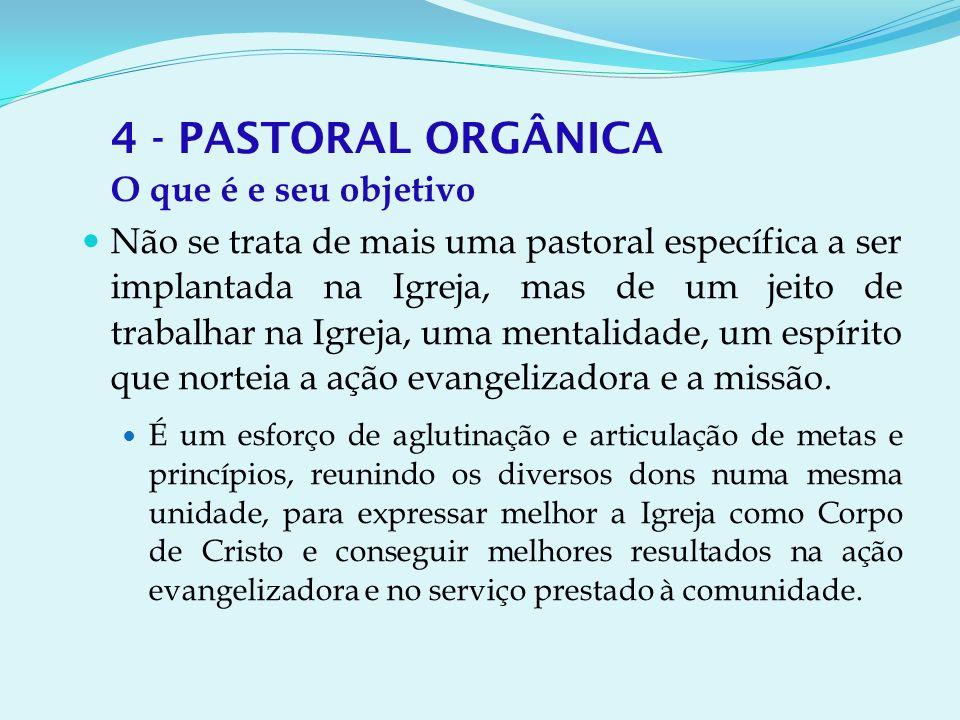 4 - PASTORAL ORGÂNICA O que é e seu objetivo.