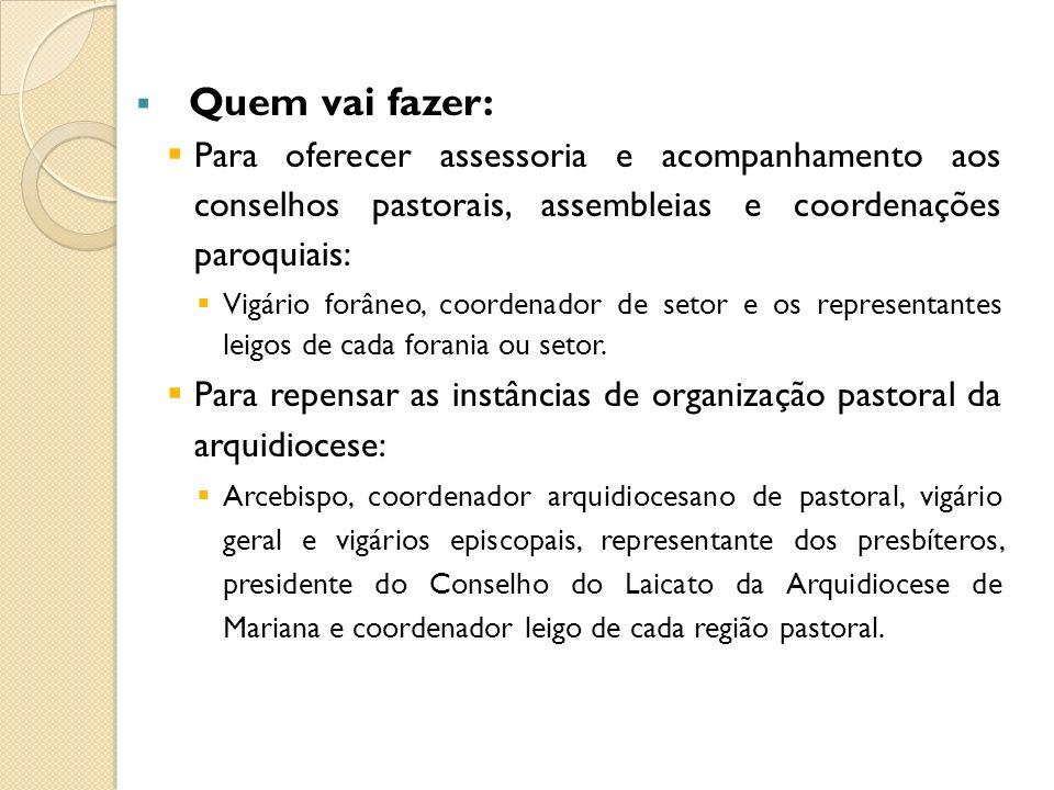 Quem vai fazer: Para oferecer assessoria e acompanhamento aos conselhos pastorais, assembleias e coordenações paroquiais: