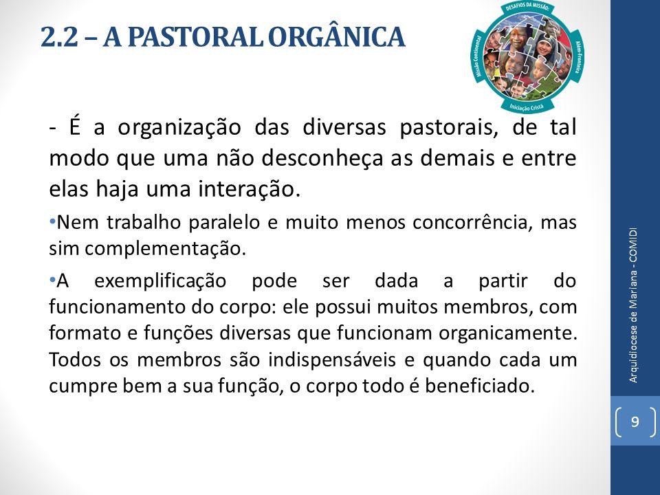 2.2 – A PASTORAL ORGÂNICA - É a organização das diversas pastorais, de tal modo que uma não desconheça as demais e entre elas haja uma interação.
